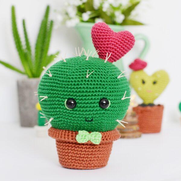 Cole the crochet cactus pattern